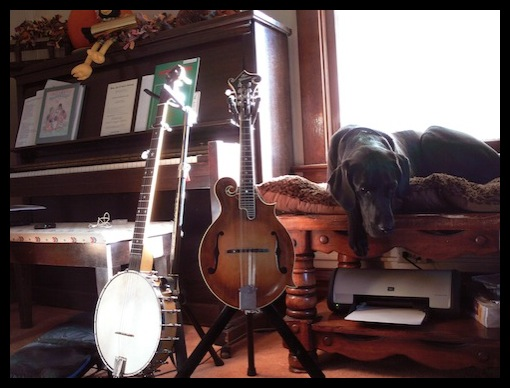 A Folksingeru0026#39;s Perspective : Mike Iverson